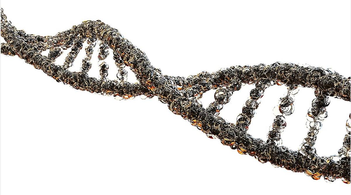 CRISPR Advances Make the Gene Editor Specific to Tissues & Times | Genetics And Genomics
