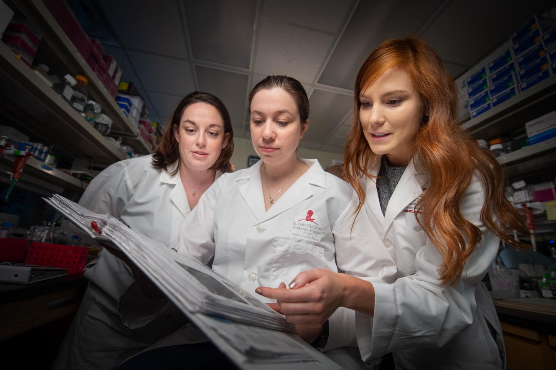 A 3D Look at the Genome Reveals a Super Enhancer | Genetics And Genomics