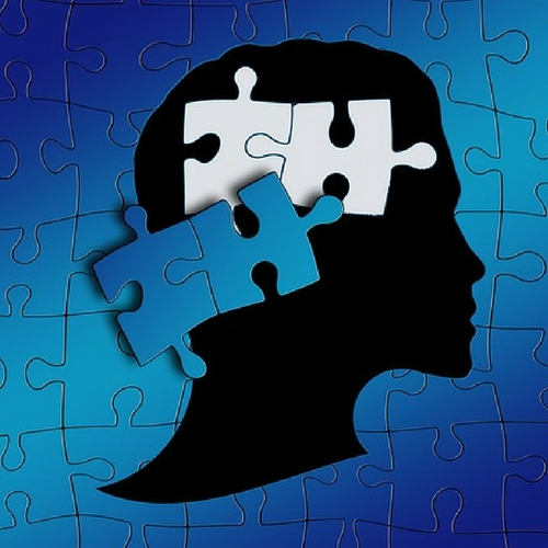 Neuroscientists Reverse Some Autism >> Neuromodulation Could Curb Some Autism Behaviors Neuroscience