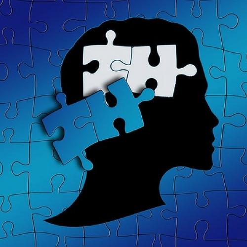 Autism Behaviors Show Unique Brain >> Neuromodulation Could Curb Some Autism Behaviors Neuroscience