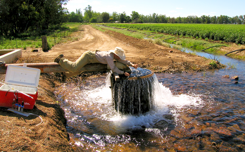 this bacterium can fight dangerous groundwater contaminants earth
