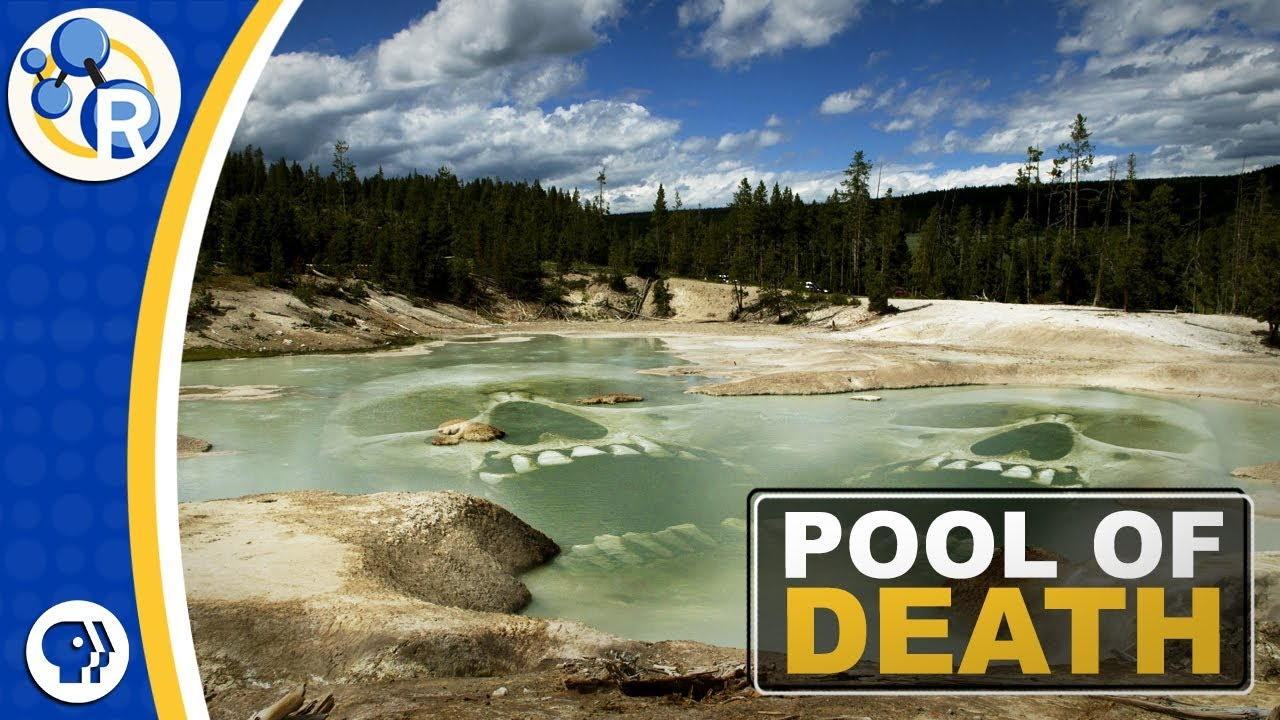 The Chemistry in Yellowstone's Deadly Hot Springs | Chemistry And
