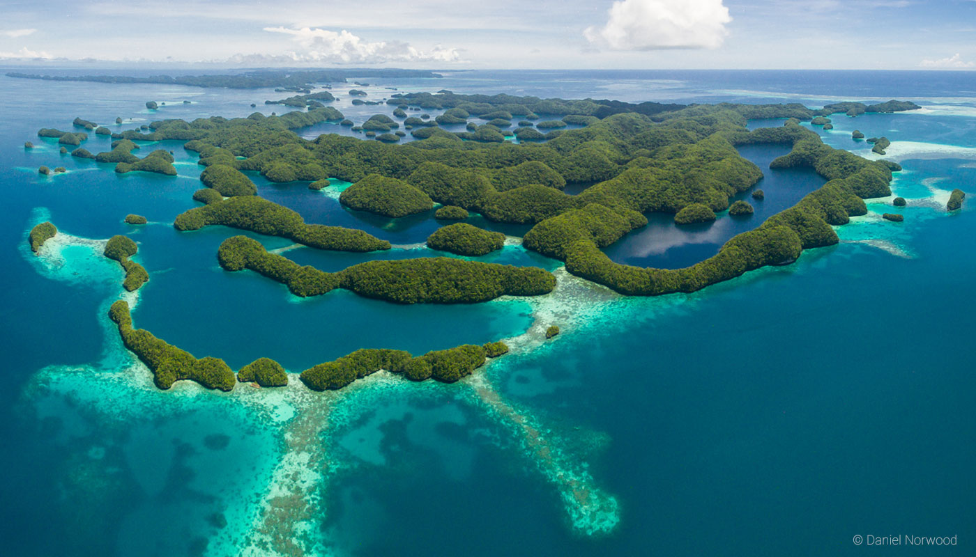 Image result for images of palau