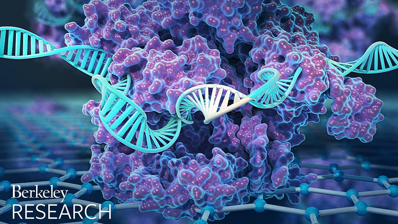 Detecting DNA - Without Amplification | Genetics And Genomics