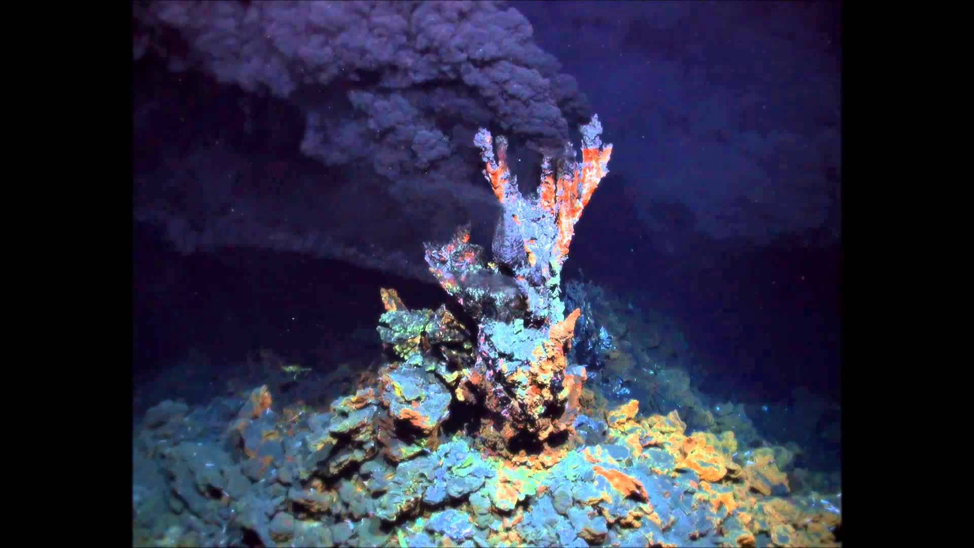 a discovery of hydrothermal vent Hydrothermal vents are the result of sea water percolating down through fissures in the ocean crust in the vicinity of spreading centers or subduction zones.